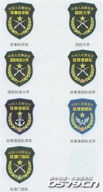 我在网络看见的2007式军服臂章和武警臂章